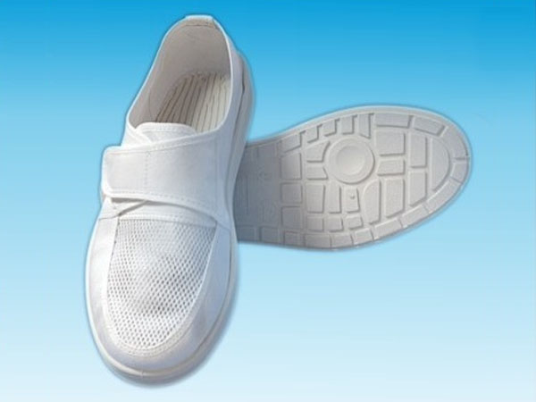 Mesh Side Shoes